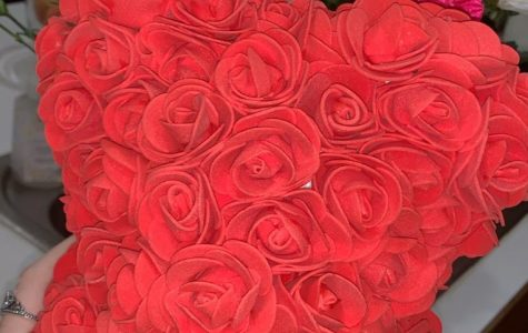 14 Days of Valentine
